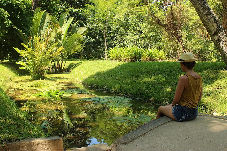 Rio de janeiro la cidade maravilhosa explore le monde for Jardin botanique 2016