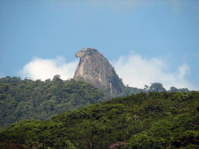 ilha-grande-pico-papagaio