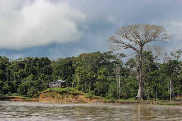 amazonie-amazone-peuples
