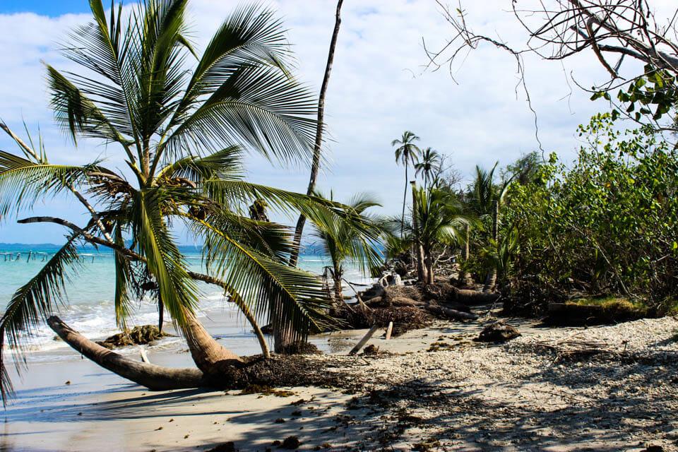 La Côte Caraïbe en plusieurs étapes