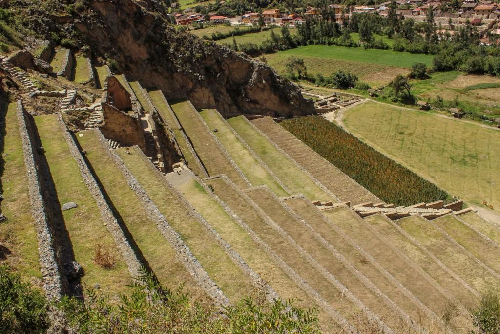 vallee-sacree-ollantaytambo-terrasse