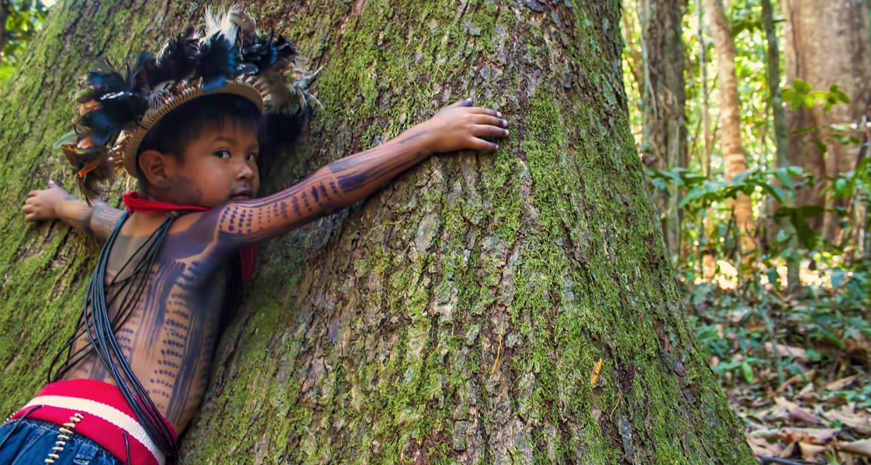 Wayanga, soutien aux peuples autochtones