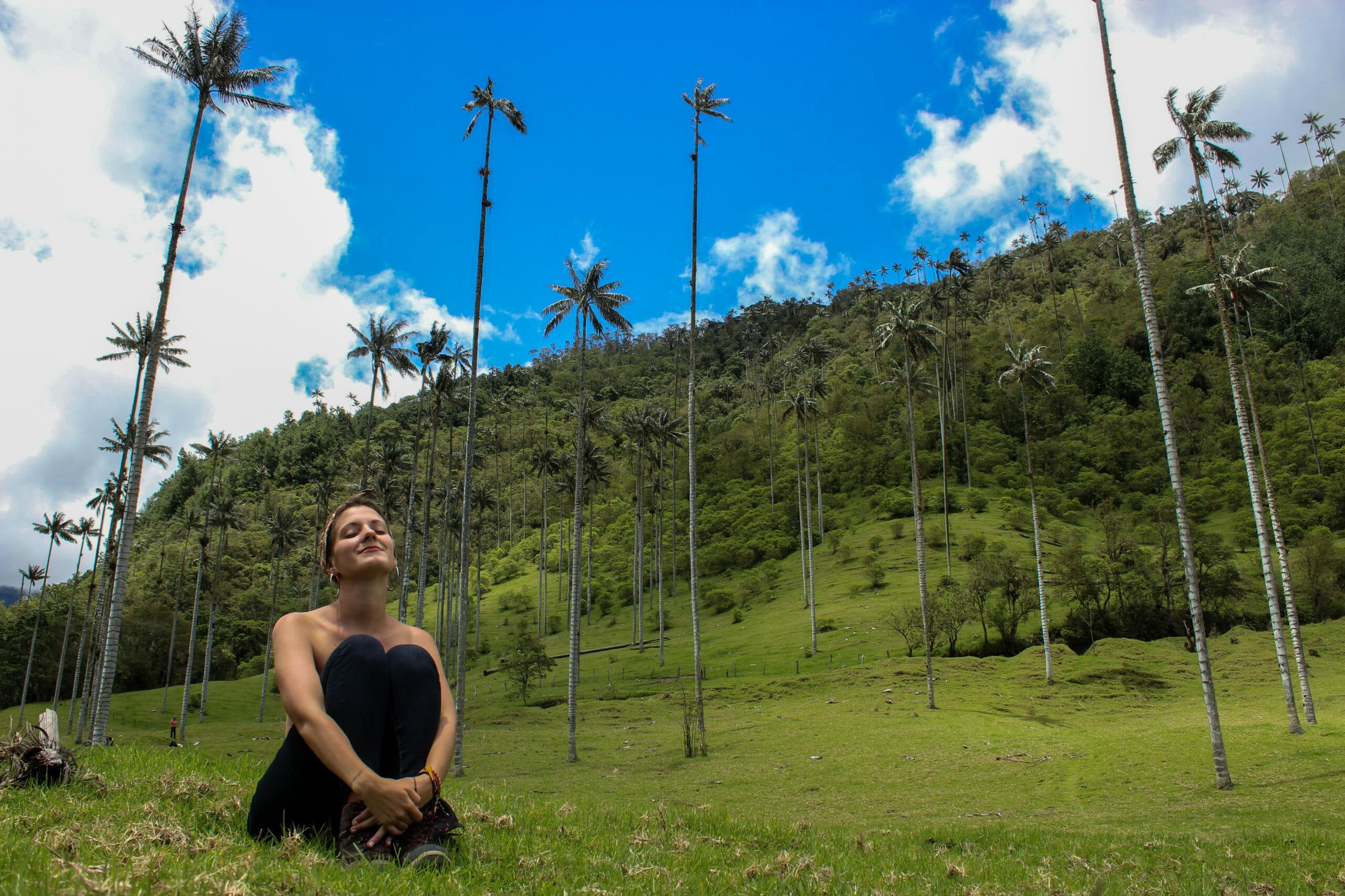 Salento : la vallée du café et les palmiers de Cocora