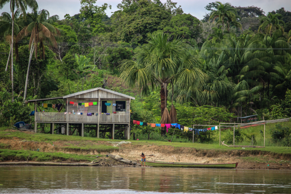 amazonie-amazone-maison