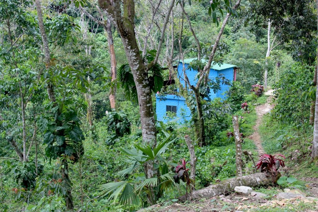 explore-le-monde-minca-colombie-amerique-du-sud