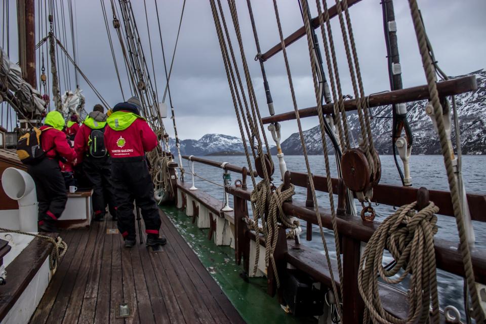 observer-orques-north-sailing