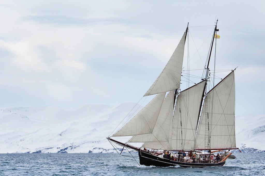 bateau-north-sailing-observation-orques