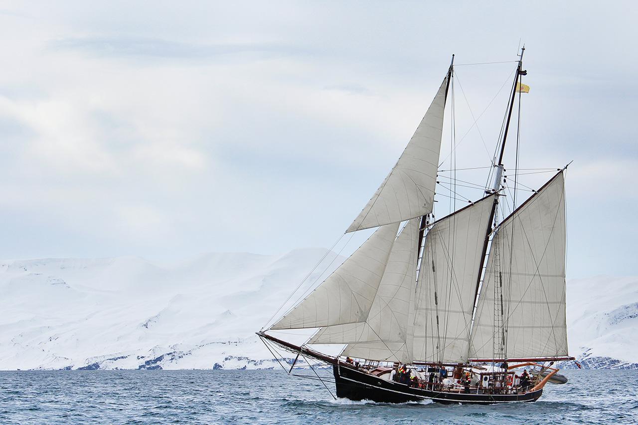 Voilier permettant l'observation des orques de façon responsable à Tromso, en Norvège