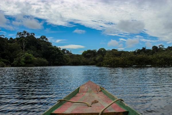En immersion au coeur de l'Amazonie
