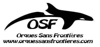 orques-sans-frontieres