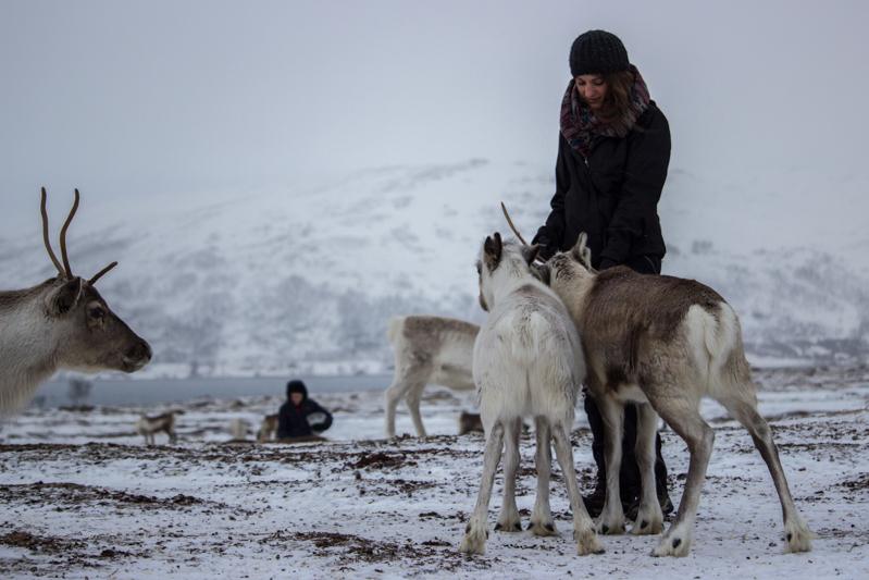 rennes-sami-tromso