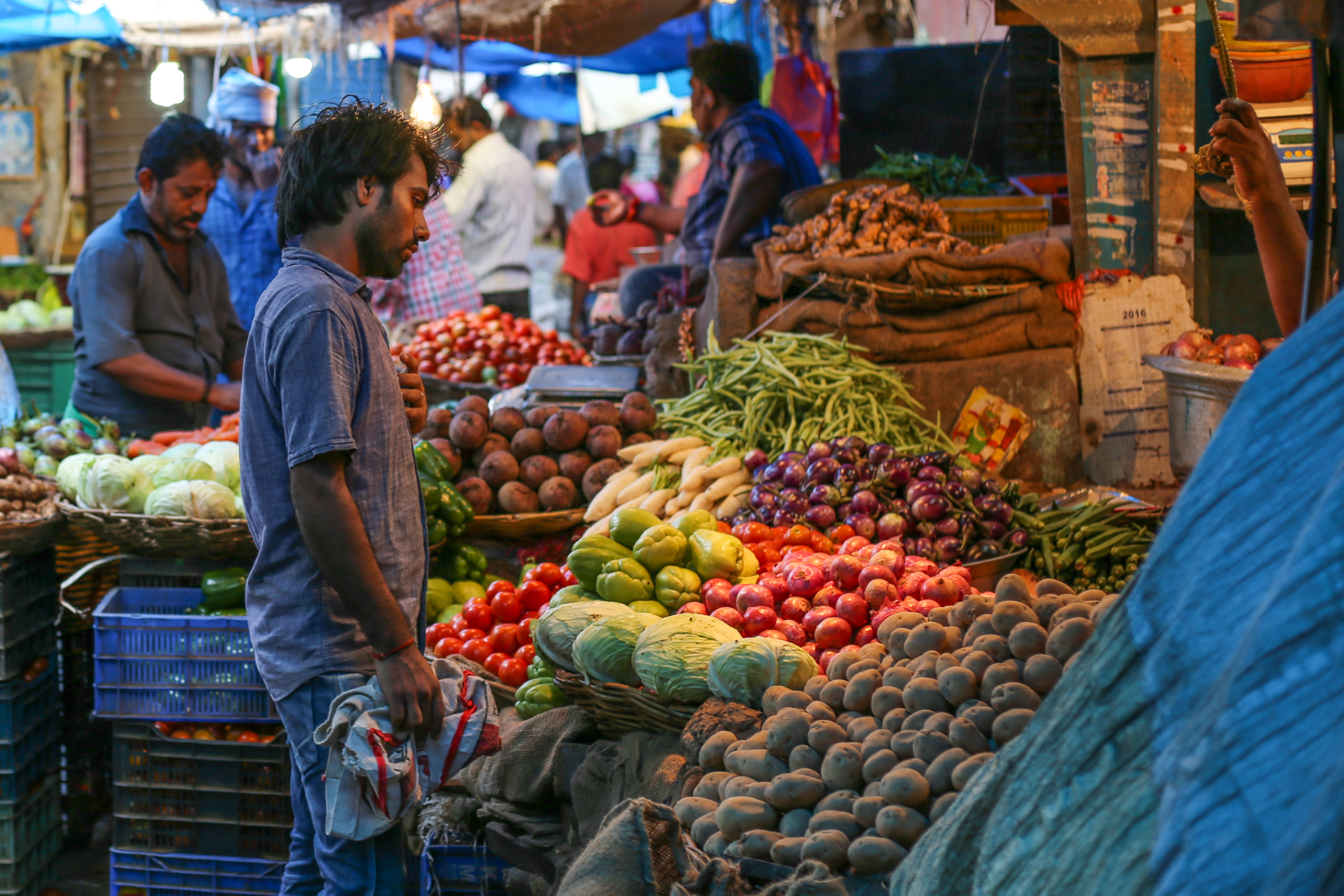 Inde-marché-fruits-légumes-pondichery-goubert-market