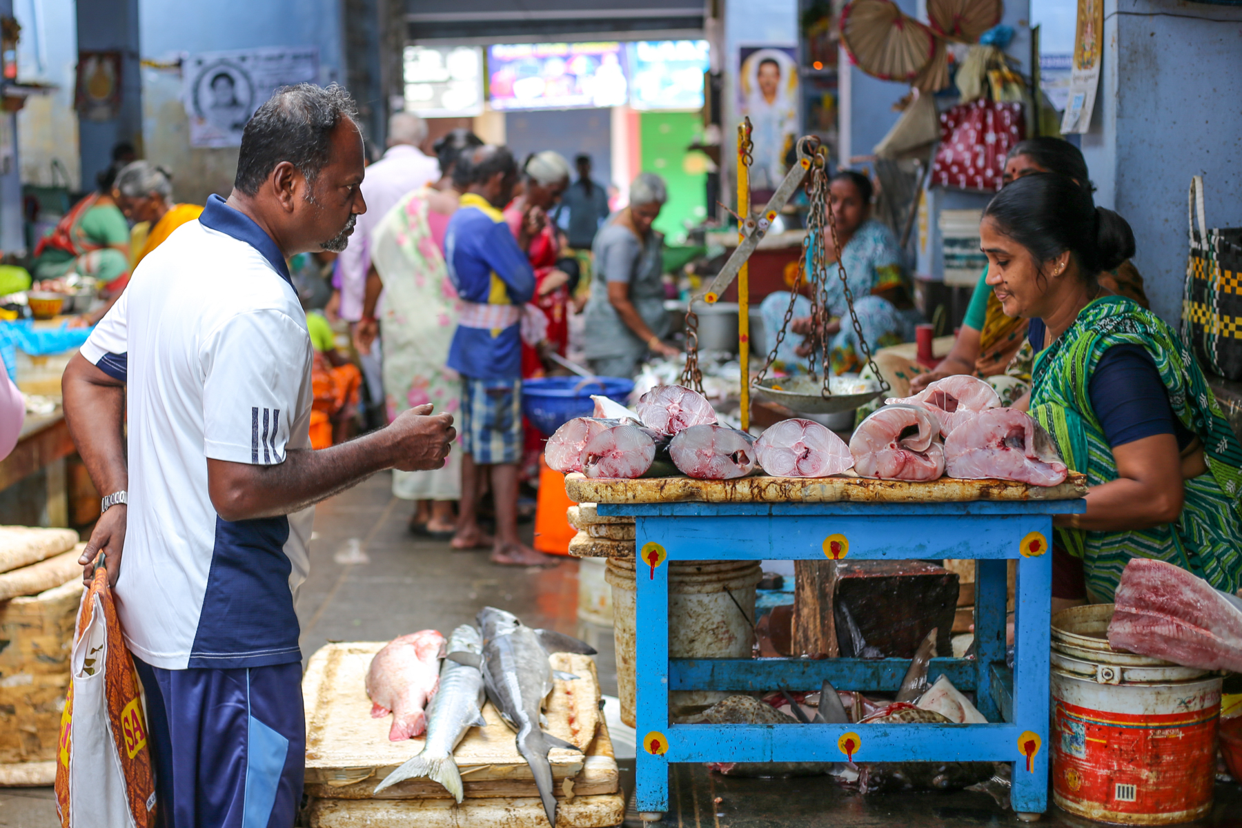 Inde-marché-pondichery-goubert-market-poissons