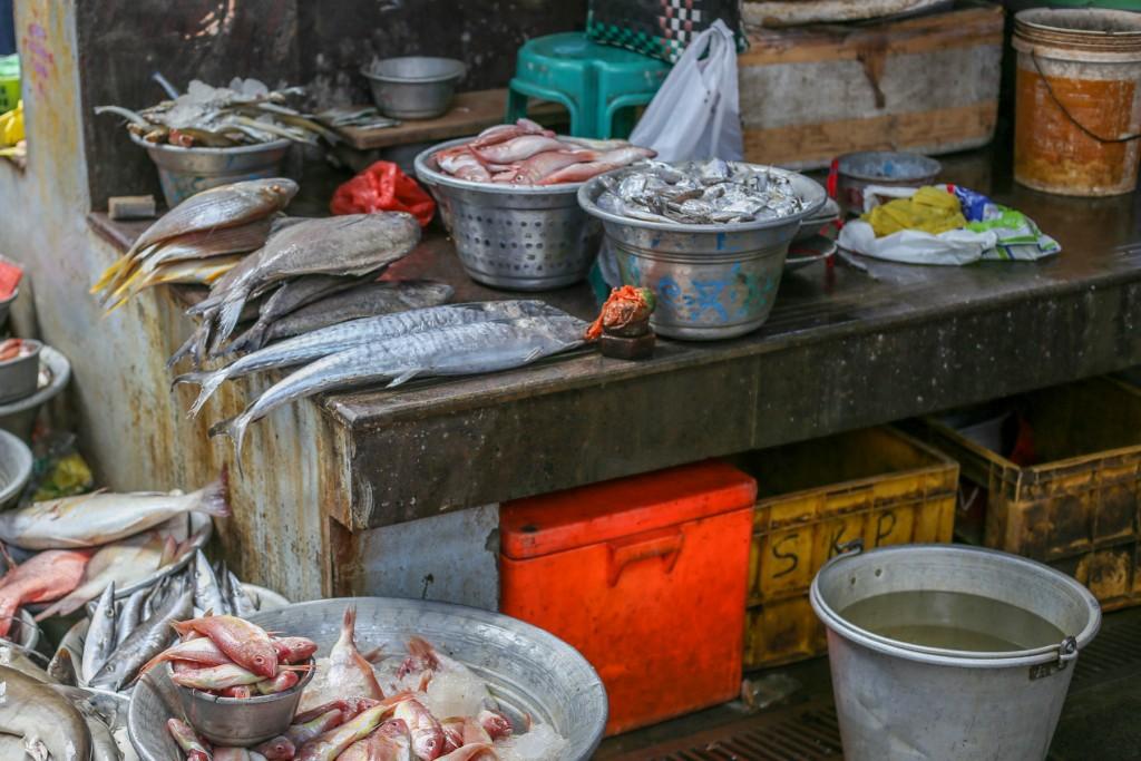 Inde-poissons-marché-pondichery-goubert-market