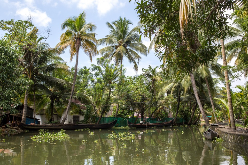 backwaters-kerala-inde-alleppey