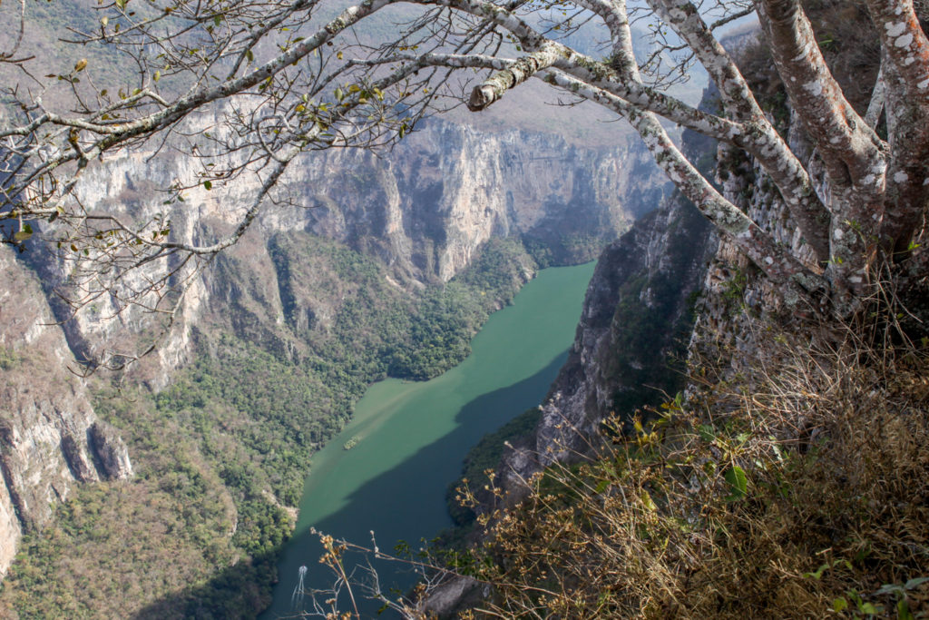 canyon-chiapas-mexique-sumidero