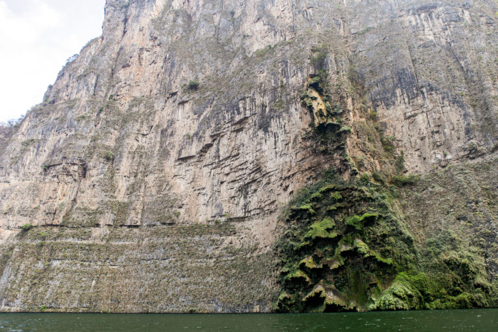 canyon-sumidero-chiapas-mexique-sapin