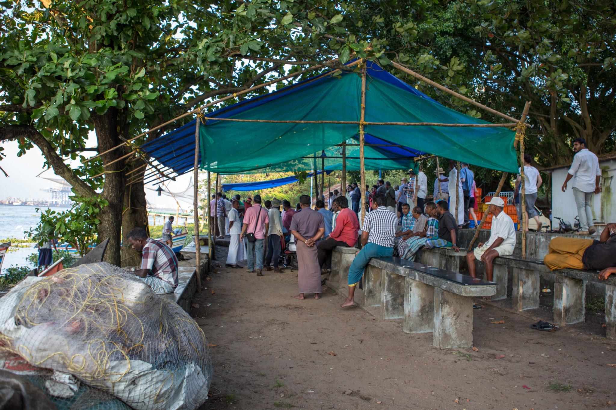 Kerala-cochin-poisson-pêcheurs-inde-criée-visite