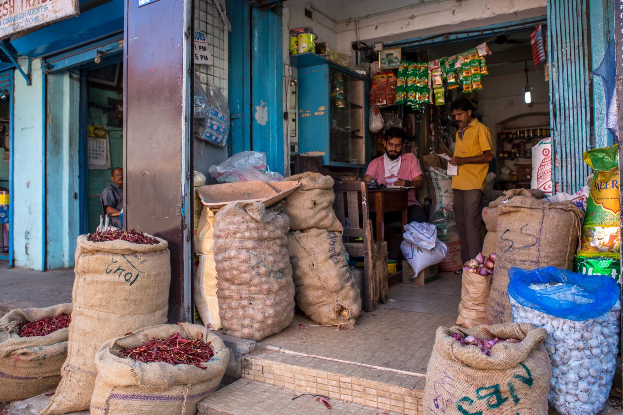 Kerala-épices-inde-voyage-visite