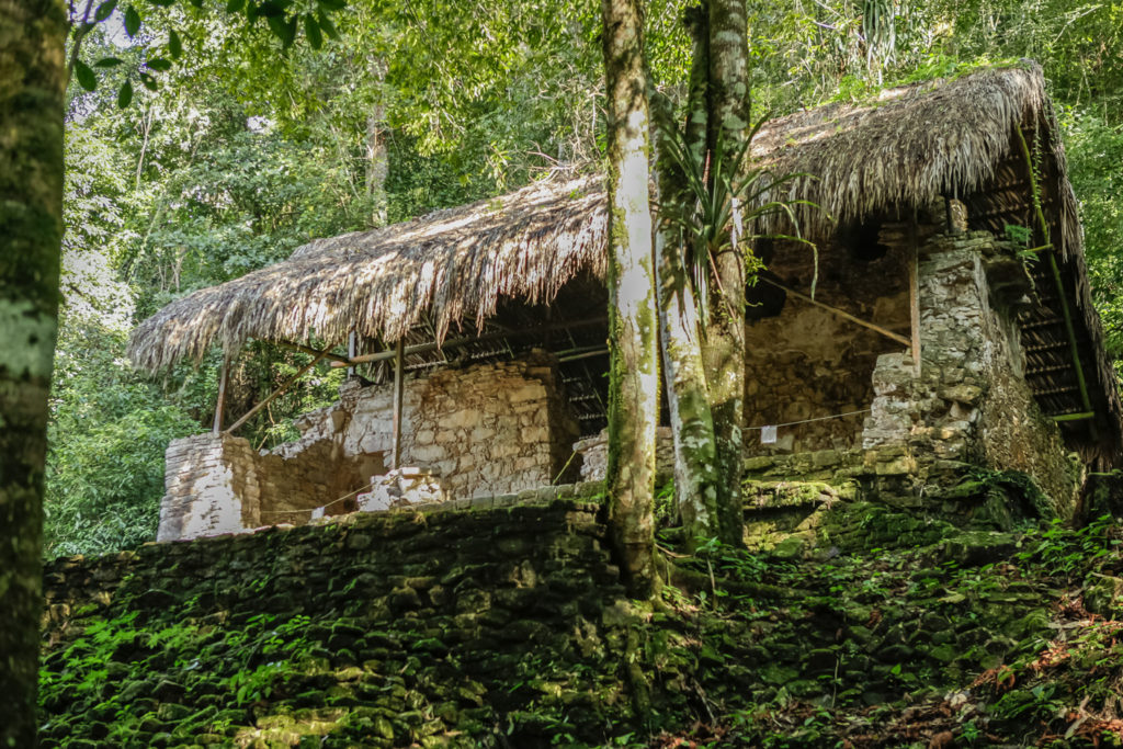 Mexique-Palenque-Chiapas-Ruines-Mayas