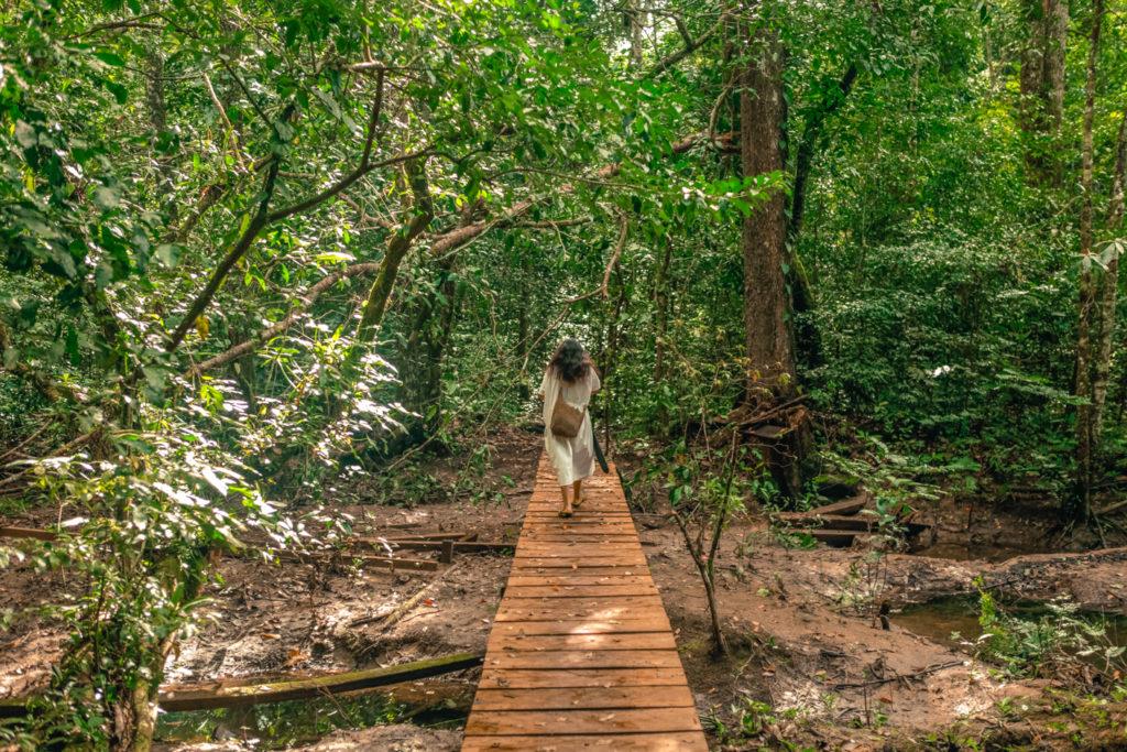 mexique-maya-communauté-lacanja-jungle