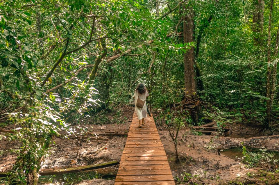 Yaxchilan et Bonampak, au coeur de la jungle Lacandone