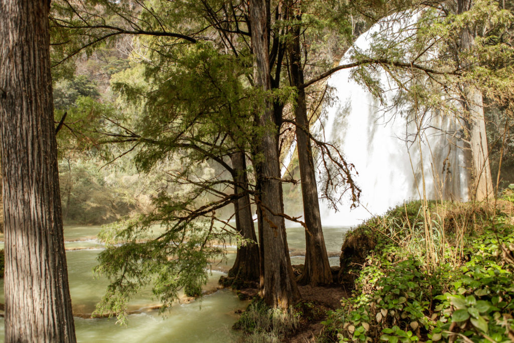 Chiapas-Cascades-Las 3 Tzimoleras-Mexique