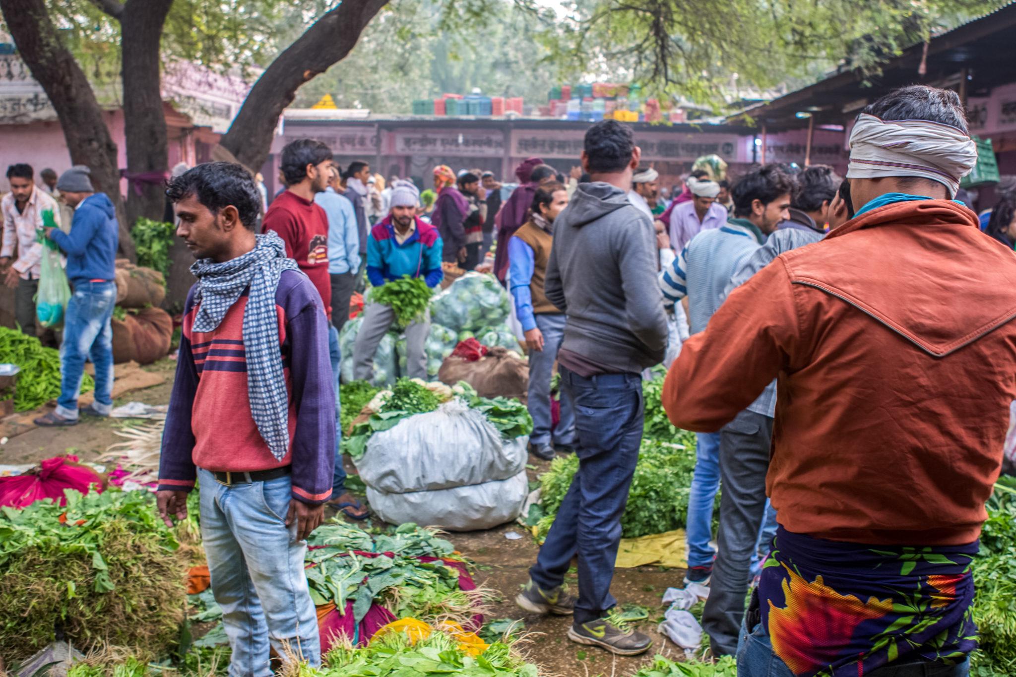 jaipur-visite-vélo-marché-inde