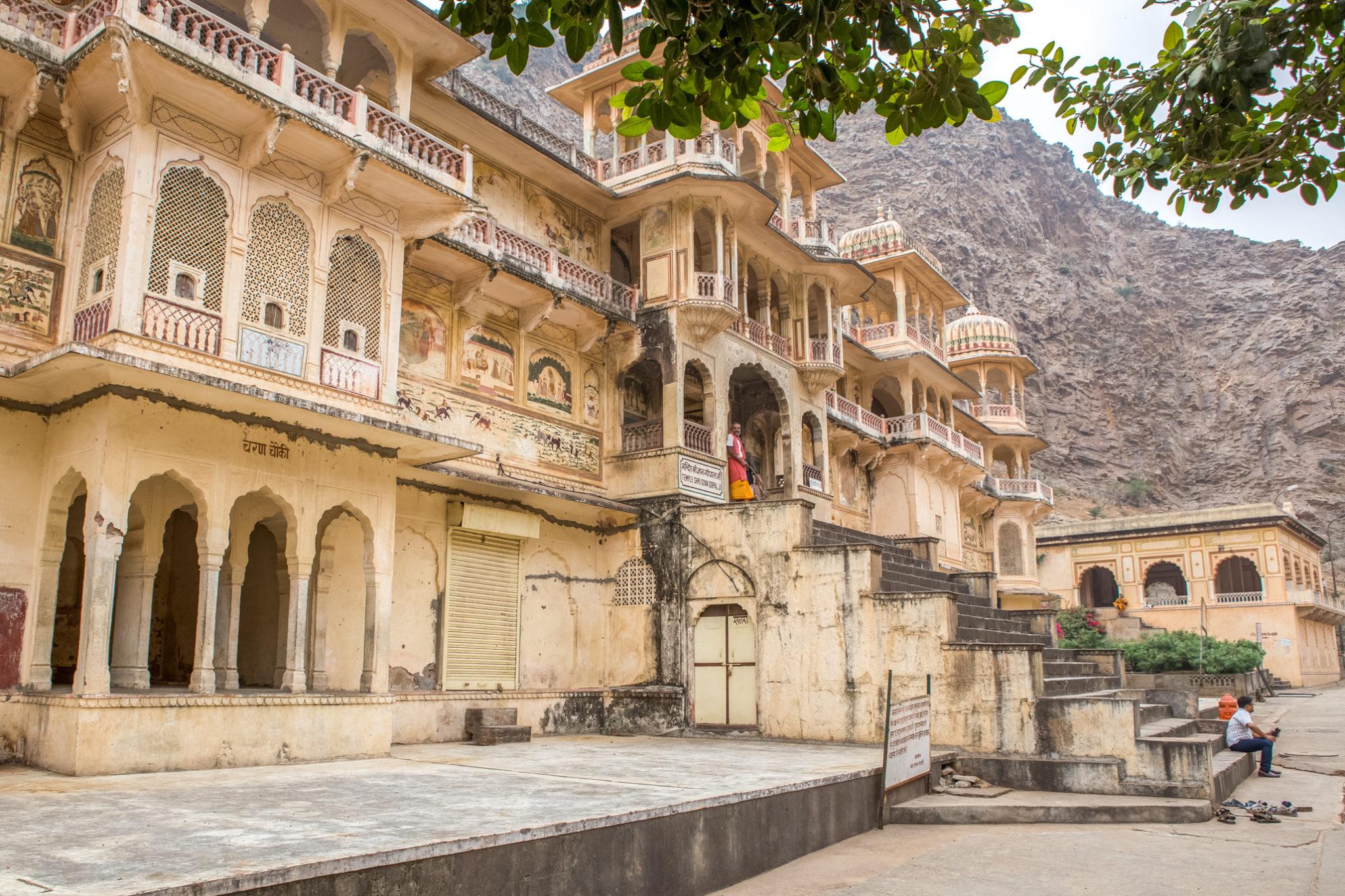 temple-singes-jaipur-inde