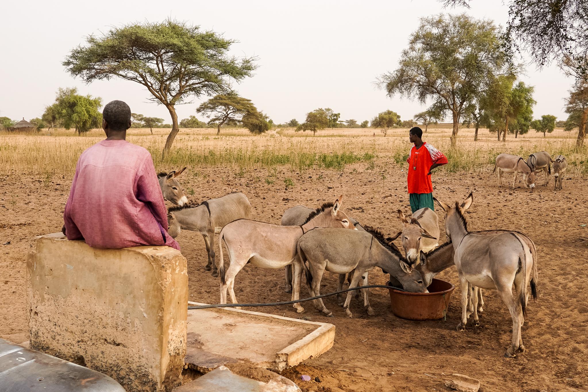 communauté-village-peul-senegal-visite-