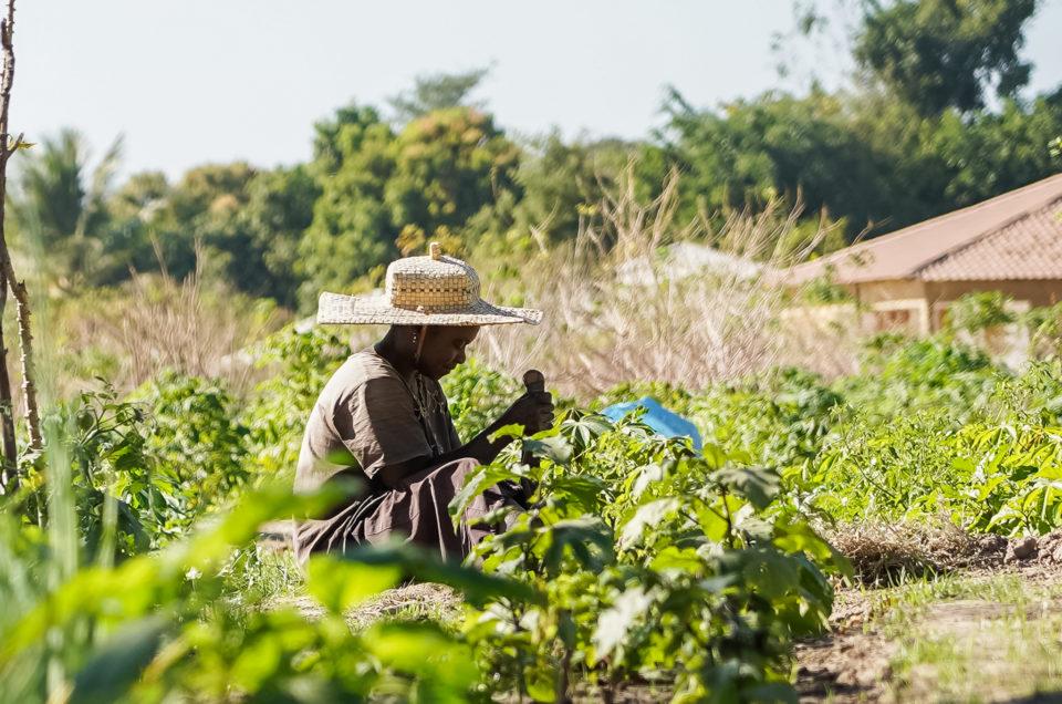 Oussouye, le royaume du Kassa en Casamance