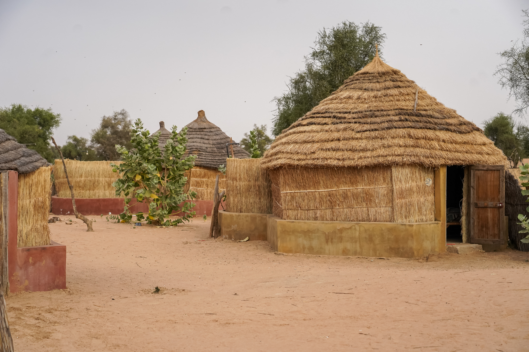 visite-senegal-village-peul-communauté