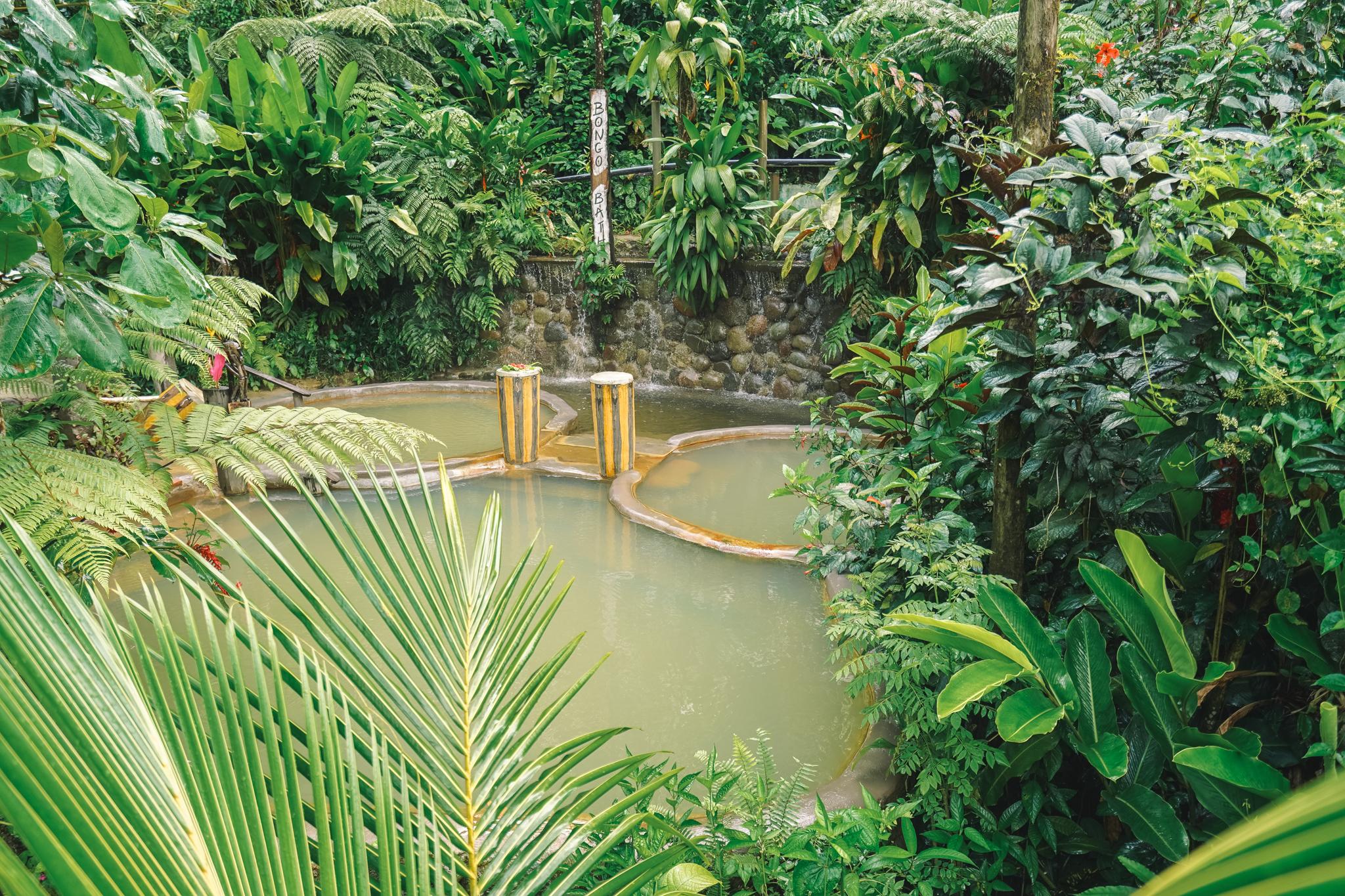 bains-eaux-chaudes-bongo-bath-dominique