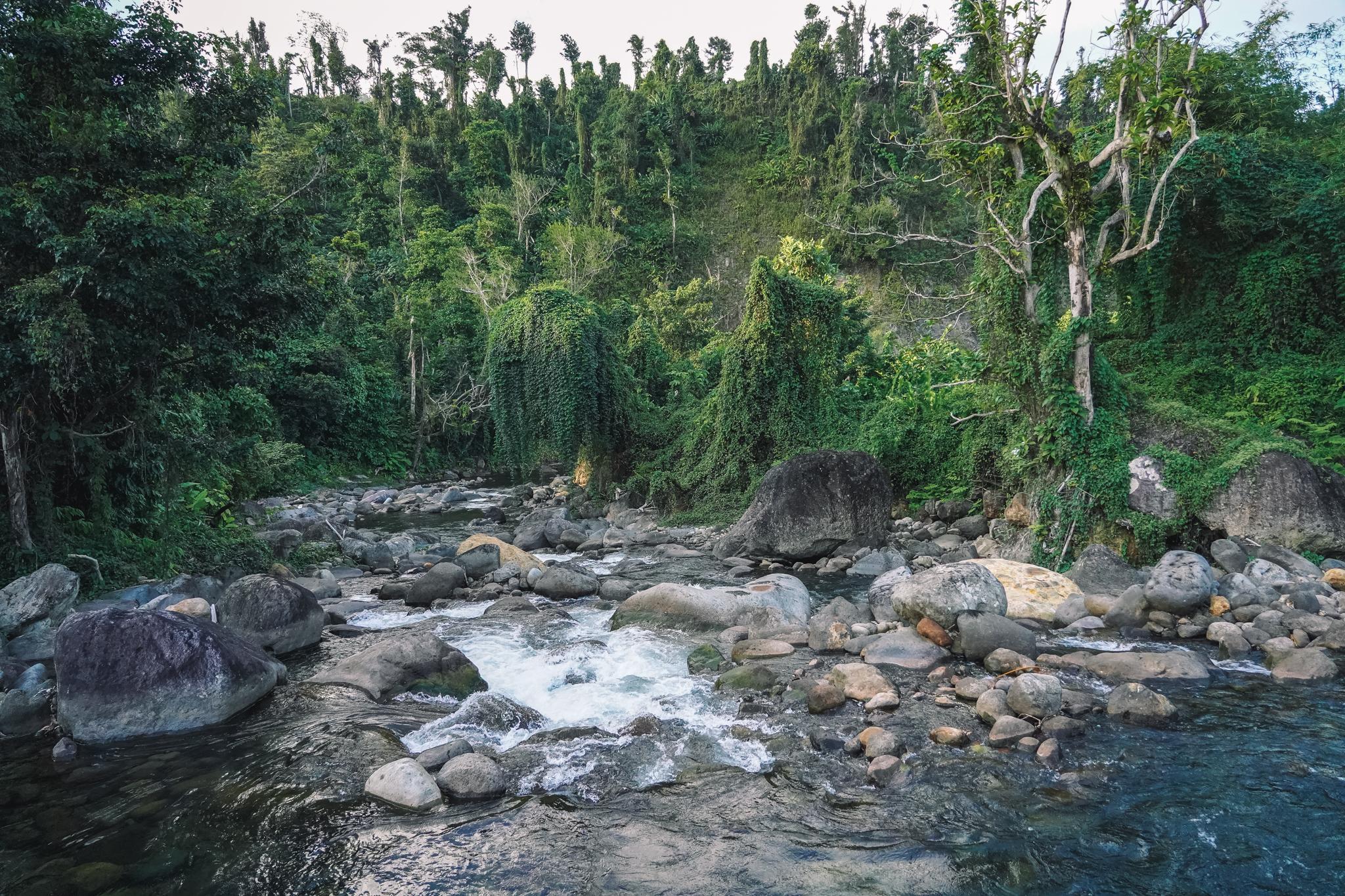 où-dormir-dominique-ecolodge