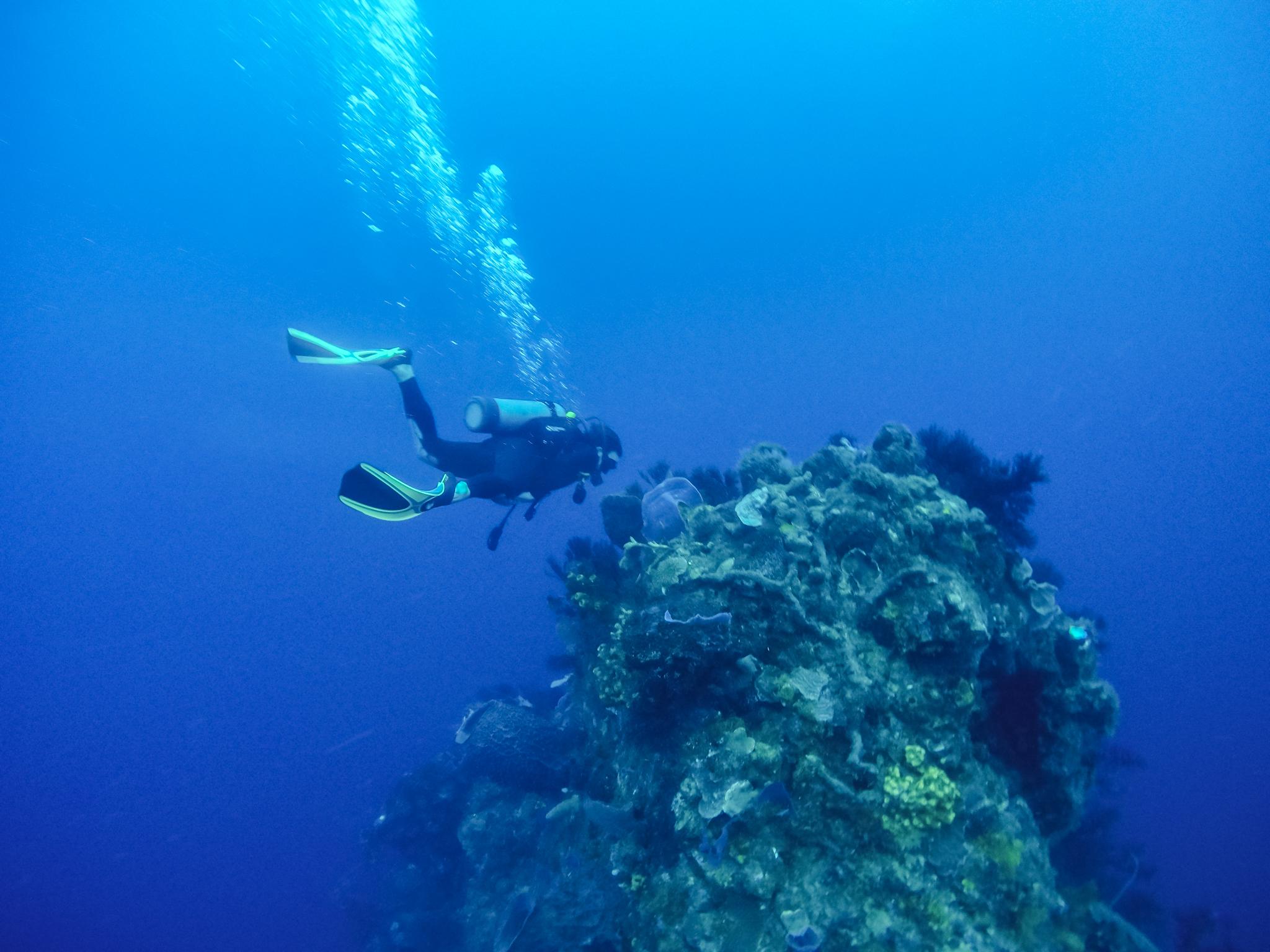 faire-plongée-dominique-soufriere