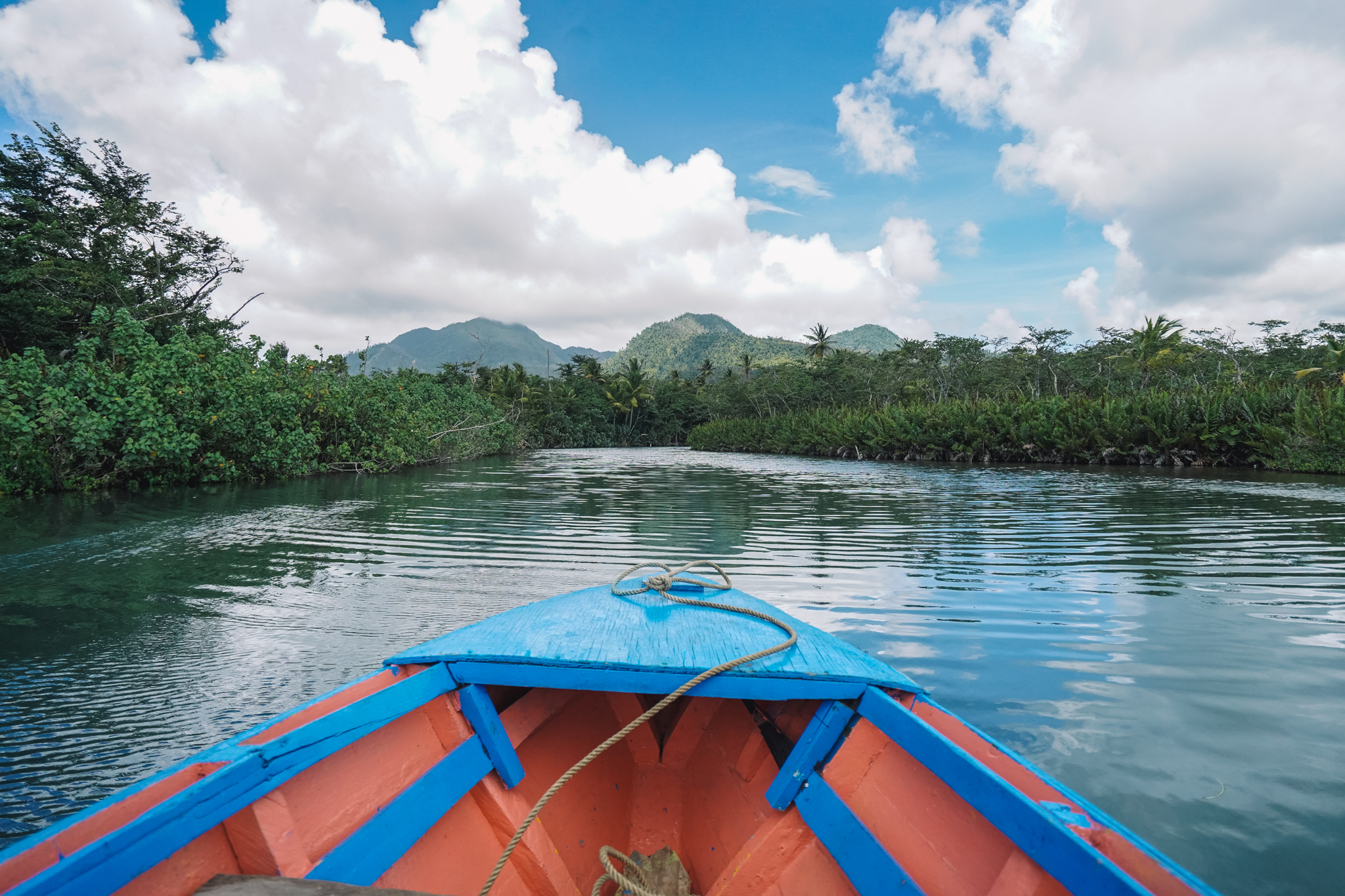 visiter-indian-river-dominica