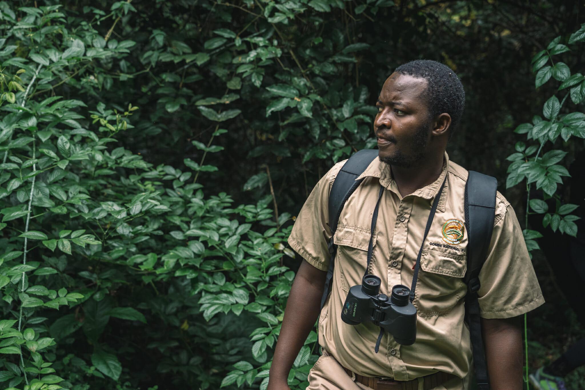 parc-gombe-tanzanie-visite