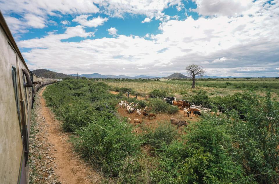 Traversée de la Tanzanie en train