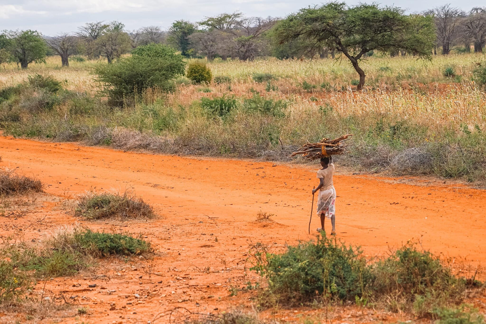 train-tanzanie-voyage-vie-locale