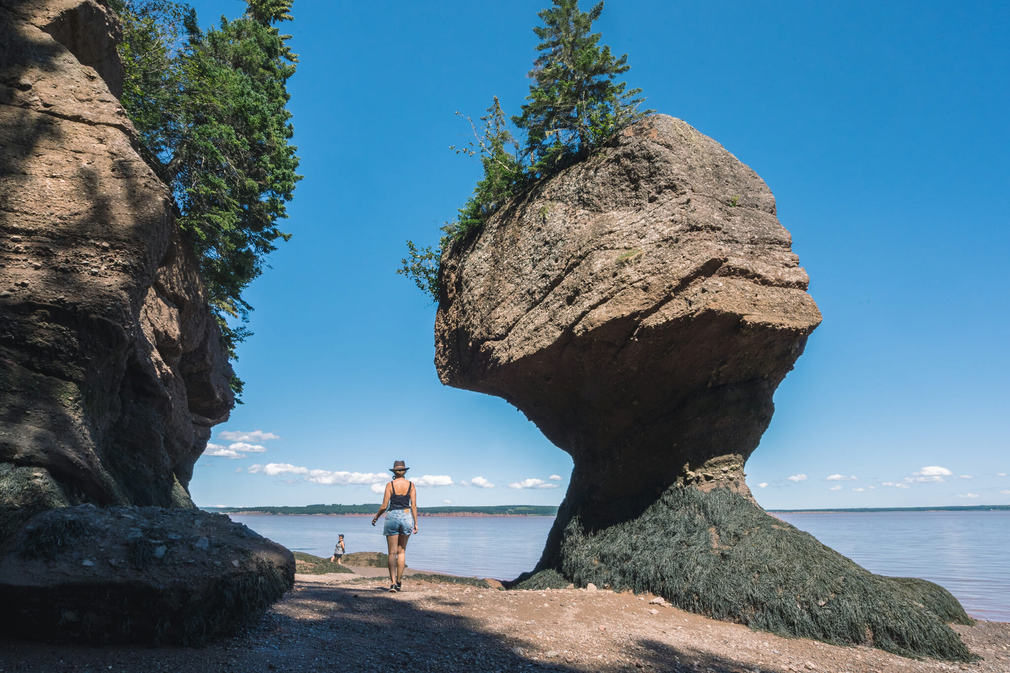 hopewell-rocks-canada-voyage-que faire