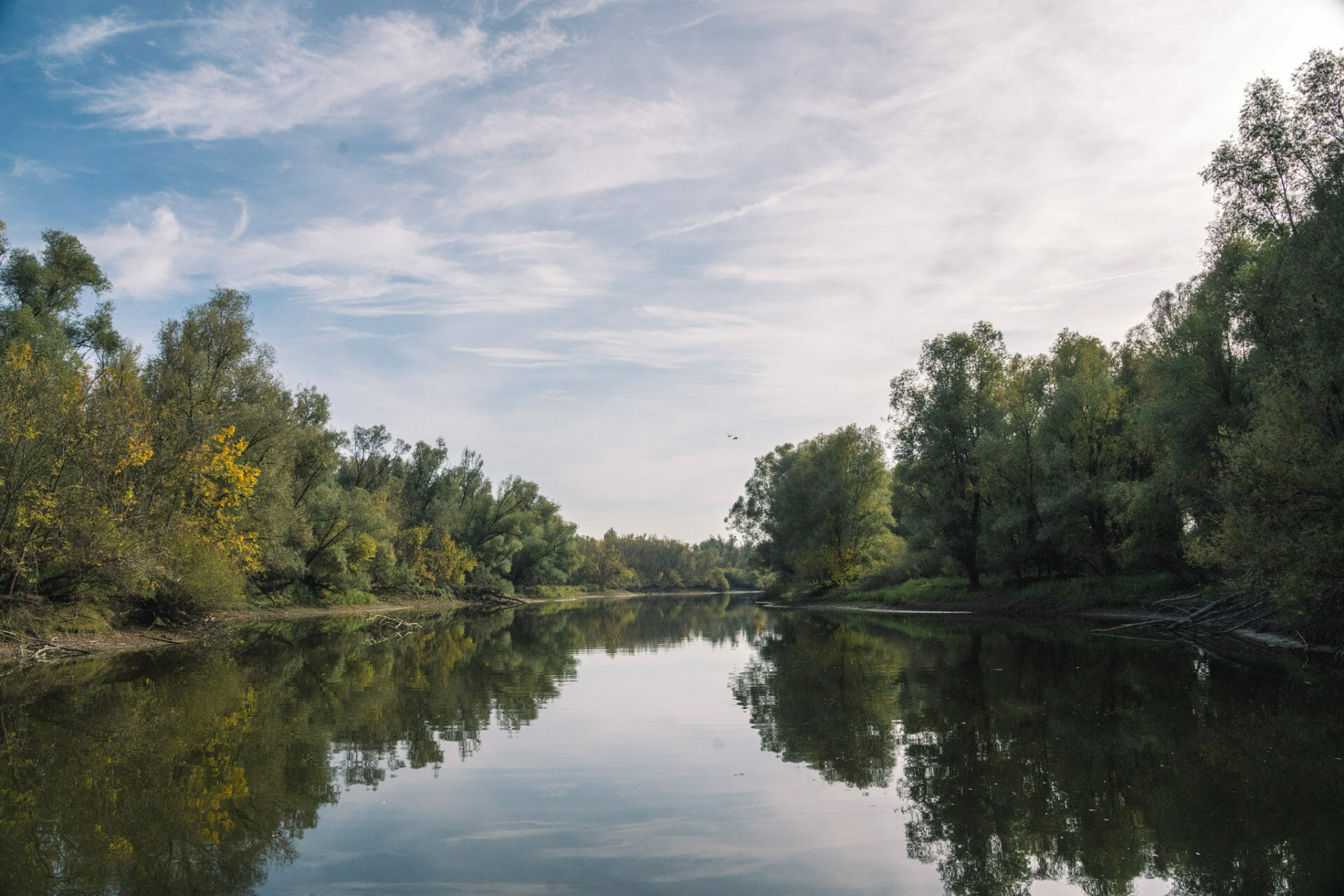 kopacki-parc-slavonia-croatia