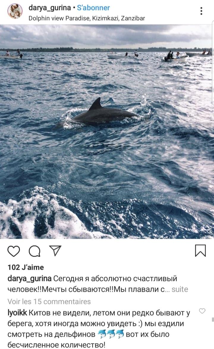 nage-dauphins-kizimkazi-zanzibar