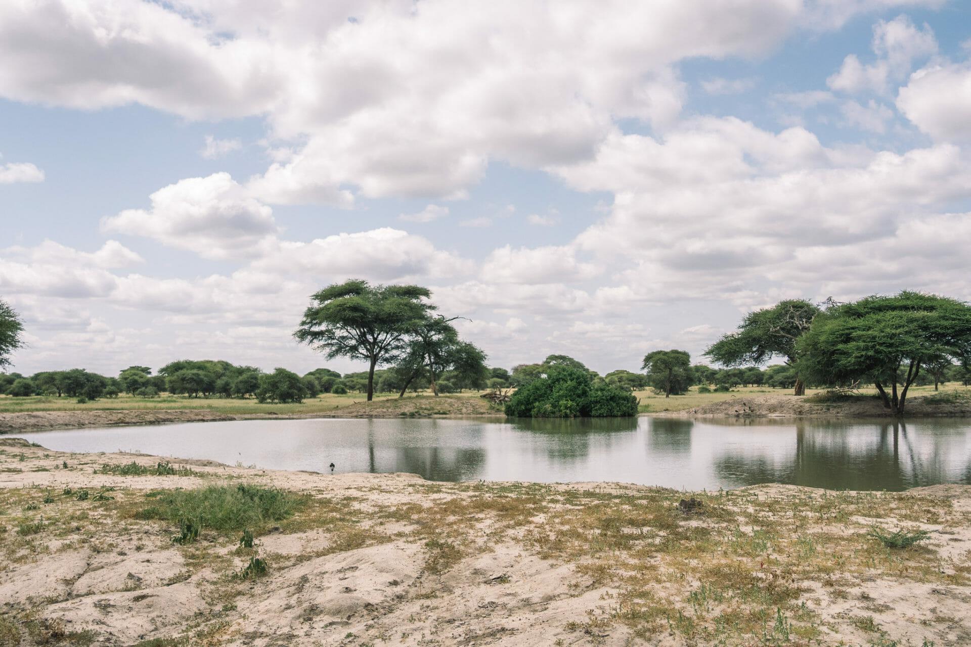 parc-tanzanie-tarangire