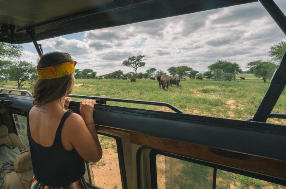 Safari dans le Parc National du Tarangire
