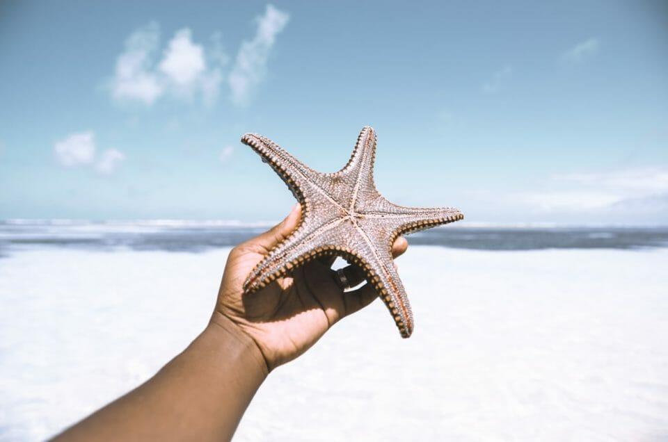 6 activités et gestes à bannir à Zanzibar