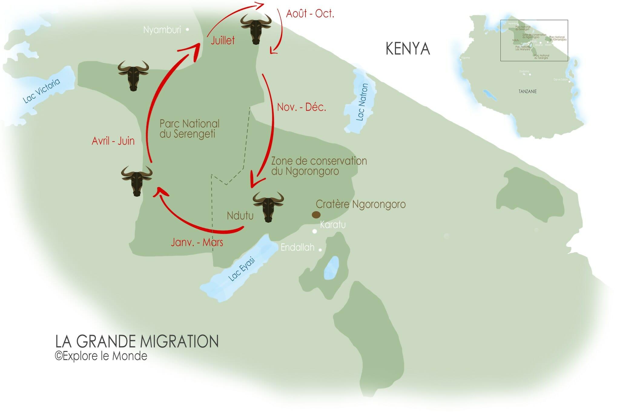 Carte de la grande migration des gnous en Tanzanie