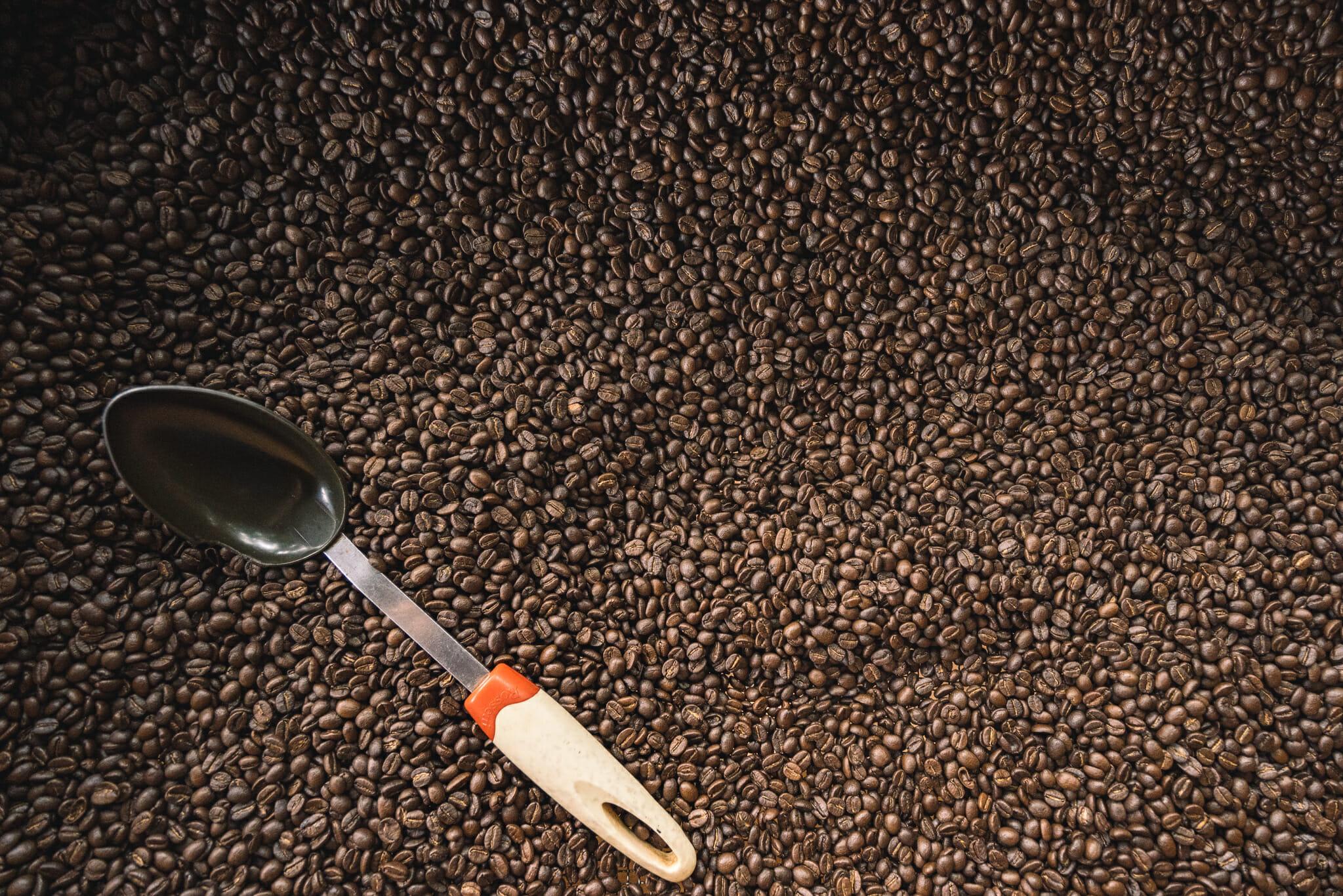 production de café dans une ferme familiale de Tanzanie