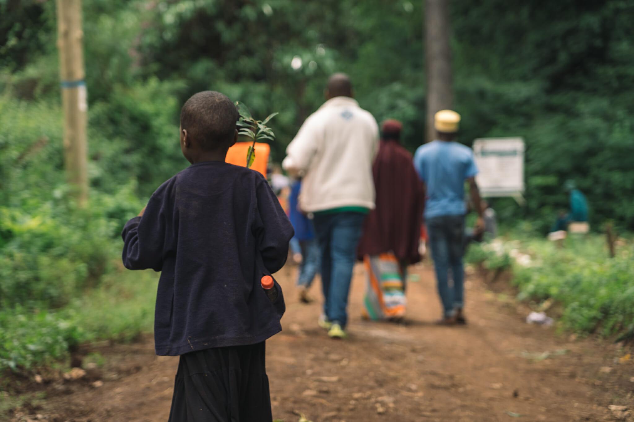 Pour chaque visite à Rau Forest, un arbre est planté par les écoliers du village