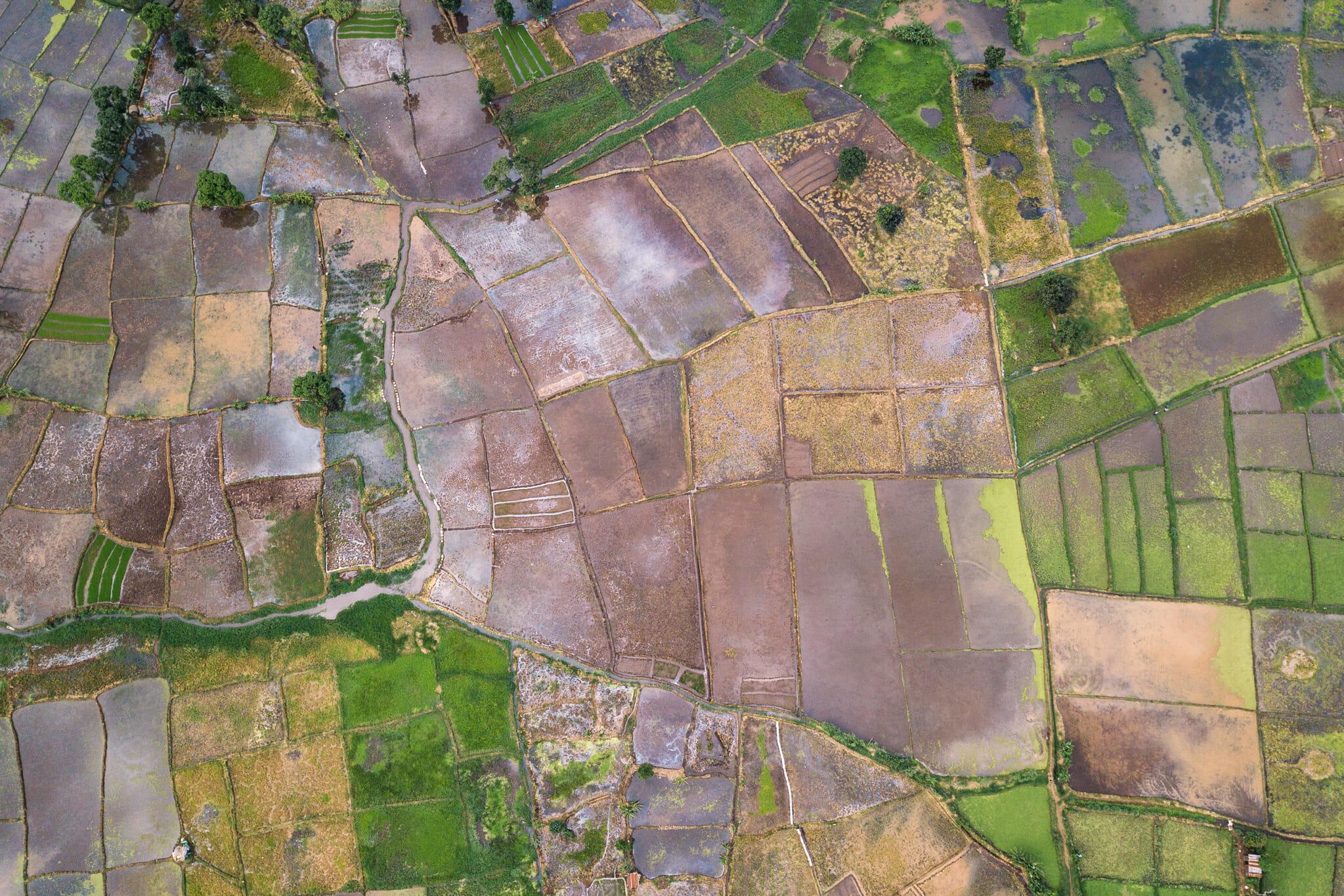 Vue aérienne sur la forêt de Rau en Tanzanie