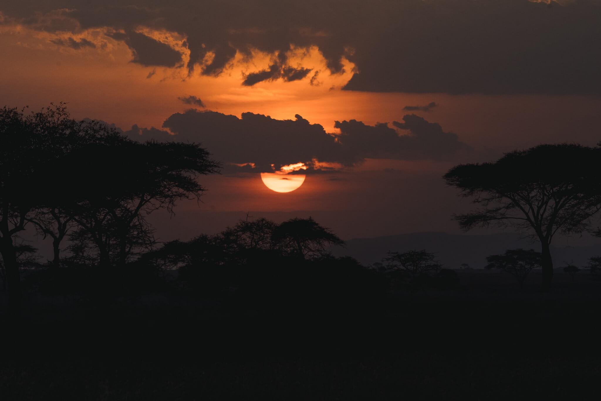 coucher de soleil sur le parc national du serengeti en tanzanie